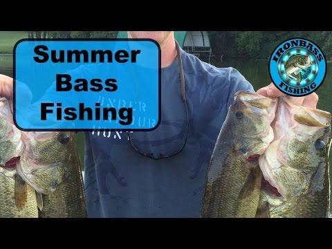 Summer Bass Fishing in Minnesota