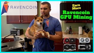 How To Mine Ravencoin + Best Wallet + Best RVN Miner - Increase Mining Profits