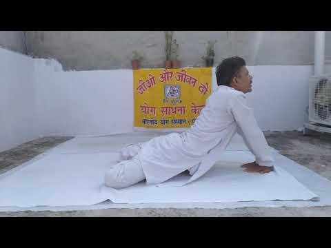 dhanurasana-(bow-pose-)-&-singhasana(🦁-lion-pose)--14