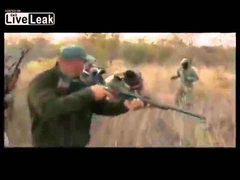 Con báo tấn công lại thợ săn