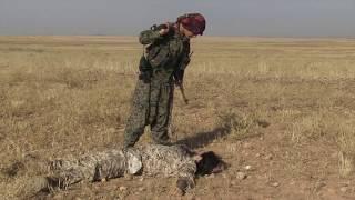 Kobane: dies de lluita en llibertat | Alba Sotorra | TEDxReus