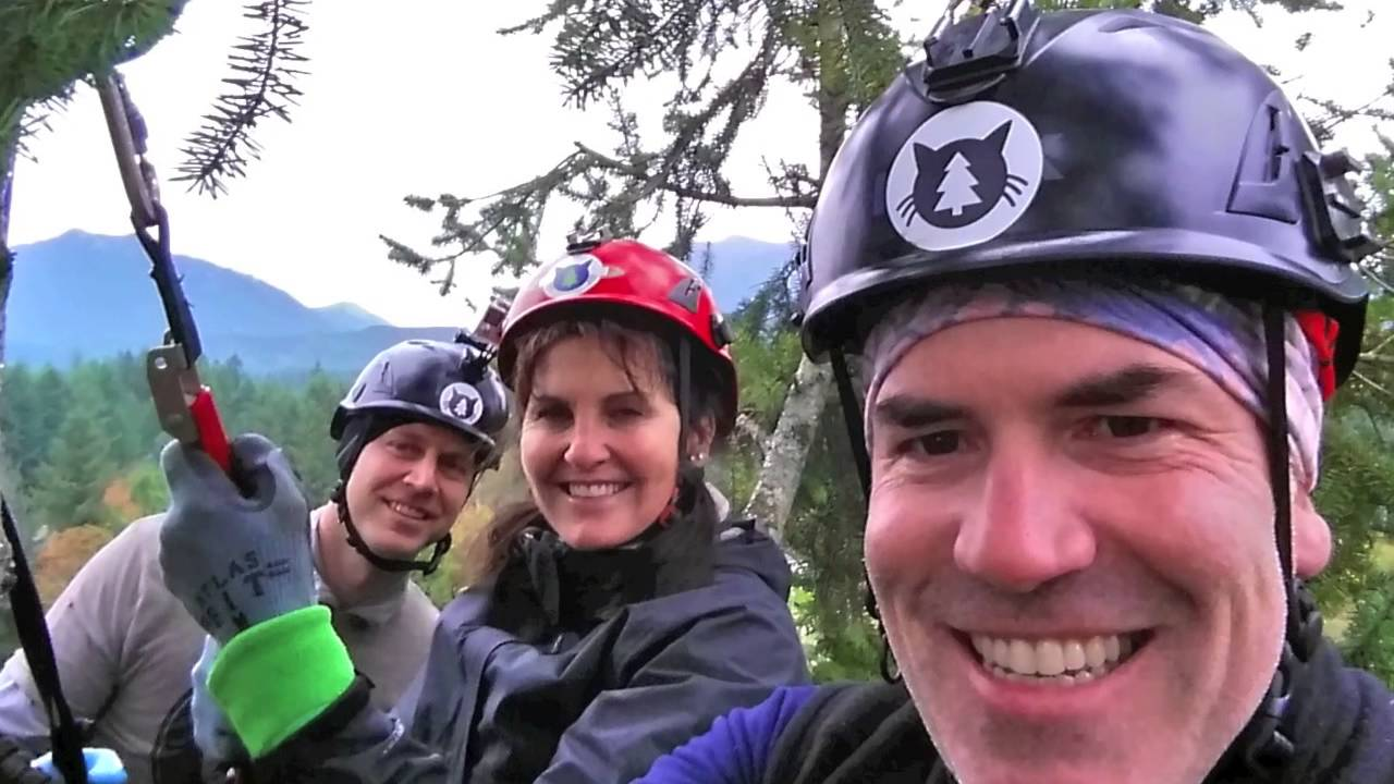 meow cat rescue auction climb with shaun and tom from treetop cat