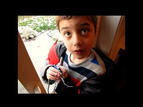 Asher Gonzales - Firefly Autism
