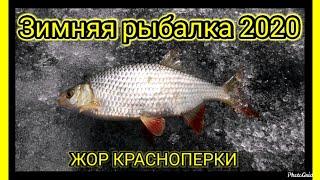 Зимняя рыбалка 2020 Ловля плотвы ЖоР КрАсНоПеРкИ Закрытие сезона