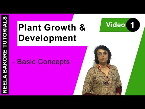 Plant Growth and Development - Basic Concepts