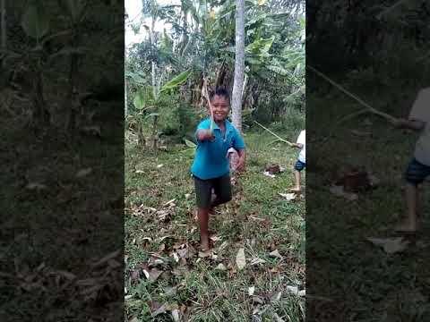 Tiban Ala Cah Ngebong