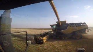 Getreideernte 2015 in Kanada