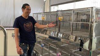 Chuồng inox 304 | Giao cây chuồng cho khách ở Q1 | Trại Chó Bình Cao