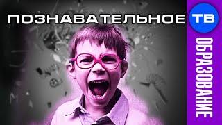 Школа УНИЧТОЖАЕТ мальчиков (Познавательное ТВ, Владимир Базарный)
