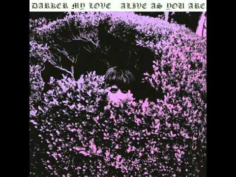 Darker My Love - Backseat