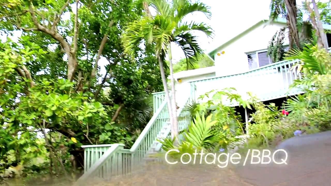 The Beach House St Thomas Us Virgin Islands