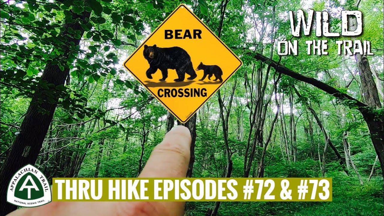 THRU HIKE EPISODES #72 & #73 - Appalachian Trail 2020