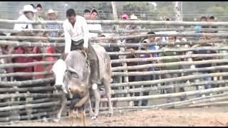 Jaripeo Ranchero   Pisaflores 2014