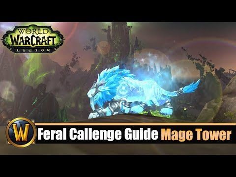 [WOW] Feral Challenge Guide: Mage Tower