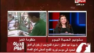 بالفيديو..جودة عبد الخالق: عدم ذكر أسماء المتهمين فى قضية فساد القمح شىء مريب