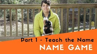 How to Teach Your Dog the Name Game - Introduce the Name