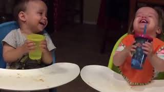 Twin Toddlers Can't Stop Laughing While Drinking Juice - 1012321