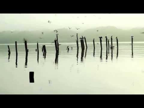 Tumi kemon kore   Tagore song   Piano   soft instrumental