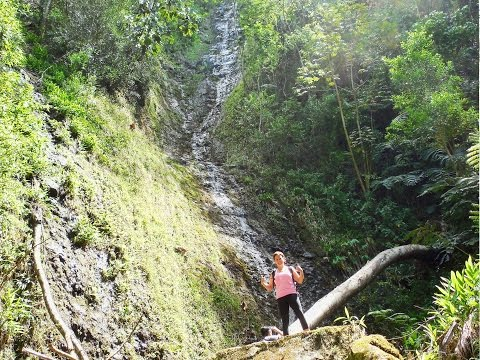 howzitboy hikes: Kahuwaiiki falls (and Manoa falls)