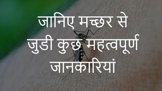 जानिए मच्छर से जुडी कुछ महत्वपूर्ण जानकारियां | Important Facts About Mosquitoes | Chotu Nai