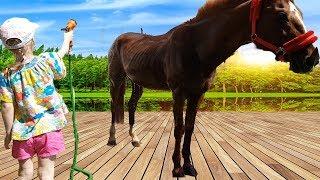 Кристина на веселой ферме знакомится с кошкой и ее котенком, кормит козу дерезу и купает коня