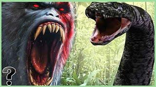 What If The Gigantopithecus Fought The Titanoboa Snake