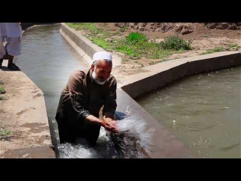 Supporting Agricultural Productivity in Afghanistan