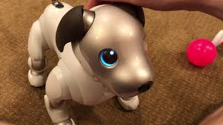 Sony Aibo ERS-1000 Unboxing!