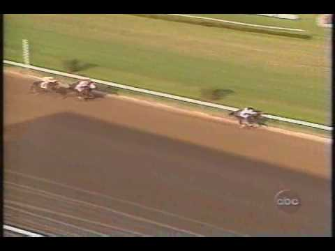 Holy Bull Florida Derby 1994