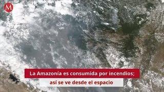 El Amazonas es consumido por incendios; así se ve desde el espacio