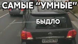 """Подборка САМЫХ """"УМНЫХ"""" водителей #291"""