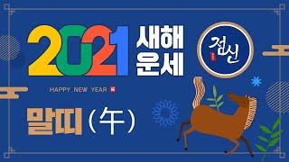 [띠별 신년운세] 2021년 말띠 운세- 재물운, 애정운 대박터진 말띠