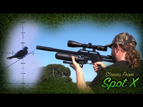 Dove Hunt With The FX Impact: Stories From Spot X, Episode 1