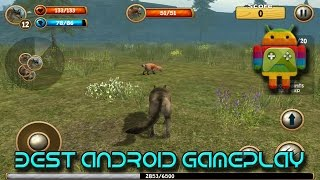 Wild Wolf Simulator 3D Android Gameplay