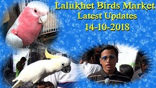 Lalukhet Sunday Birds Market 14-10-2018 Latest Updates (Jamshed Asmi Informative Channel) Urdu/Hindi
