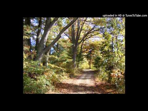 Sean Watkins -  The Orange Autumn Days