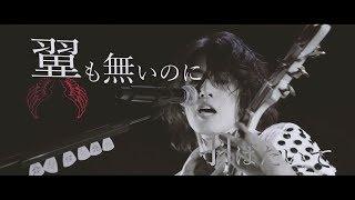 SHIN「jack the ripper」【OFFICIAL LIVE MV】