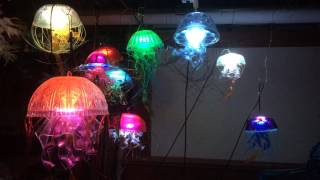 "Lighted Jellyfish ""Mysteries of Duality"""