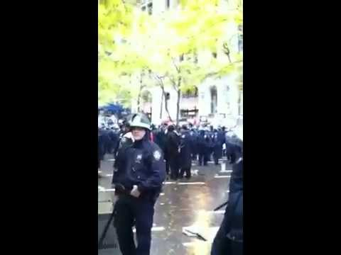 Police beat protester in Zuccotti Park 11/17/11