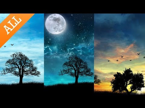 Day Night  Wallpaper All v147  Download