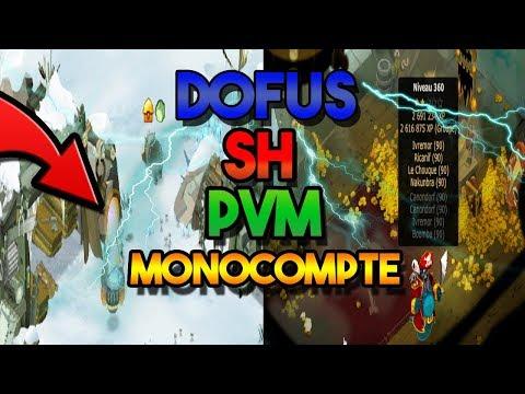 Dofus Sh Pvm Monocompte Zone Enutrosor Et Moon تونس