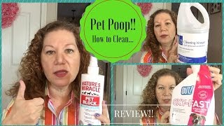 Pet Poop! 3 MUST HAVES to Get Stains, Smell Out & Repel Future Accidents!