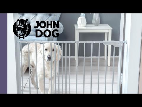 Trening Samotności u psa - TRENING PSA - John Dog