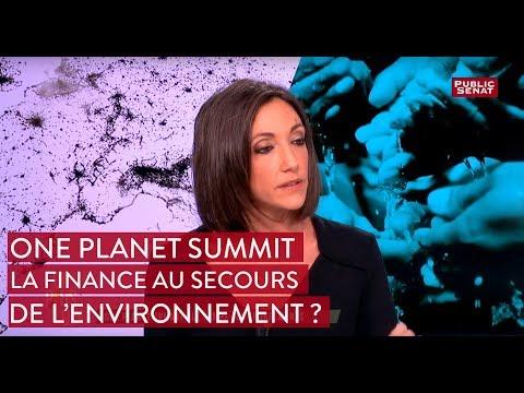 """""""One Planet Summit"""" : la finance au secours de l'environnement ?"""