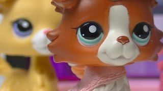 ♥ LPS Troublemaker - Episode 11 (Forgiveness) SERIES FINALE ♥