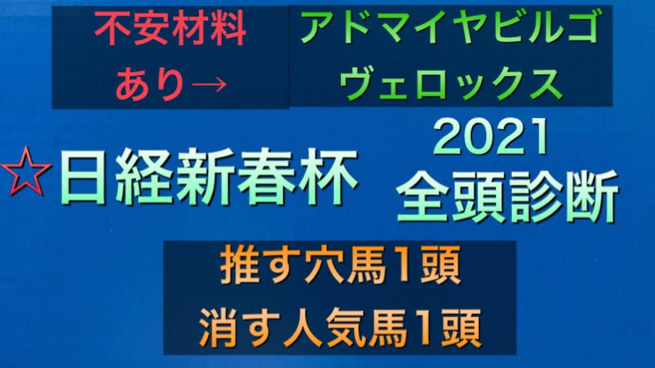 【競馬予想】 日経新春杯 2021 全頭診断 事前予想