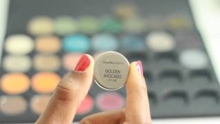 Coastal Scents Hot Pots | Swatches and Review