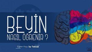 Beyin Nasıl Öğrenir ?
