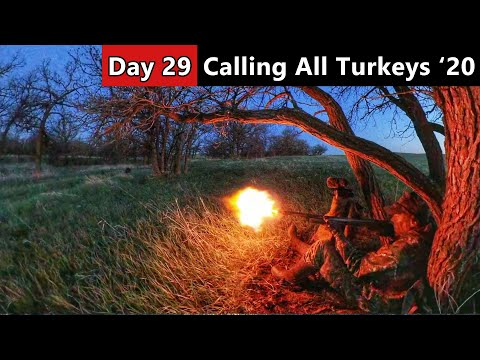 ROASTED AT FIRST LIGHT! – Public Land Turkey Hunt – Calling All Turkeys