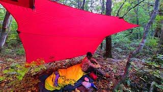 가을 오지 산속 '쉼멍'...텐트 없이 타프 한장과 비…